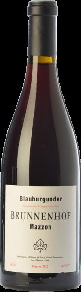 Pinot Nero Riserva Mazzon Bio 2017 - Weingut Brunnenhof