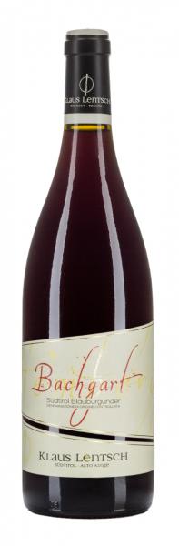 Pinot Nero Bachgart 2016