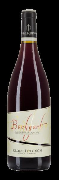 "Pinot Nero Riserva ""Bachgart"" 2016 - Weingut Klaus Lentsch"