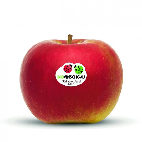 Idared Apfelkiste Bio