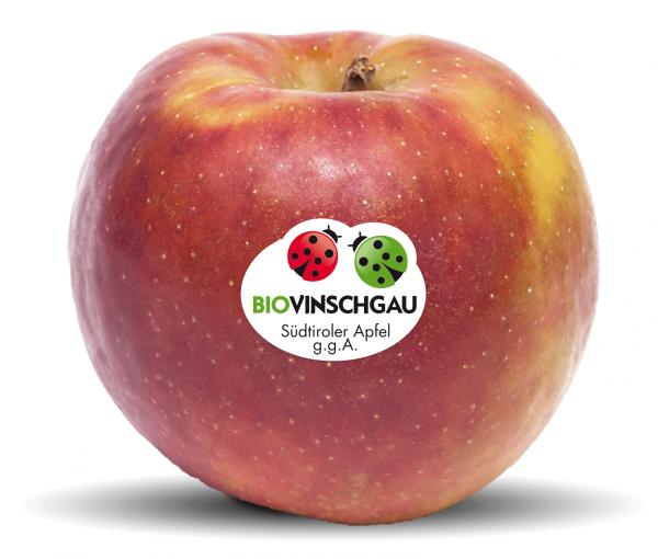 Boskoop Apfelkiste Bio