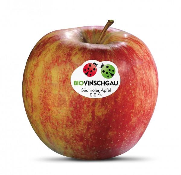 Jonagold Apfelkiste Bio