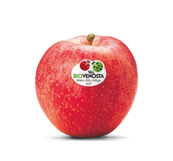 Gala Apfelkiste Bio