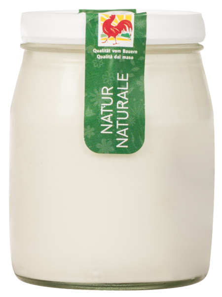 Naturjoghurt aus Schafmilch Bio