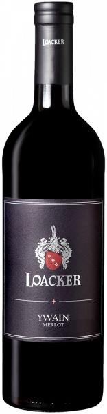 "Merlot ""Ywain"" Bio 2018 - LOACKER Wine Estates"