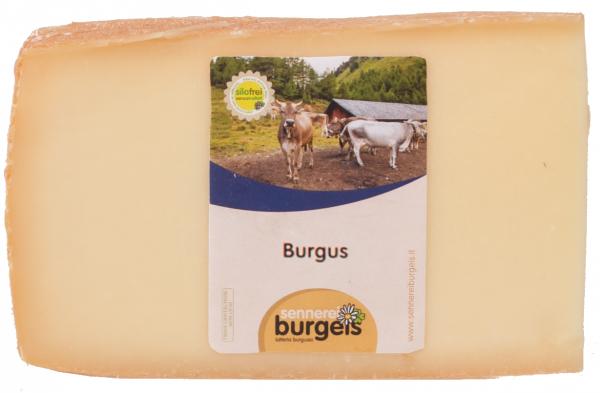 Formaggio Burgus - Almkönig - Sennerei Burgeis