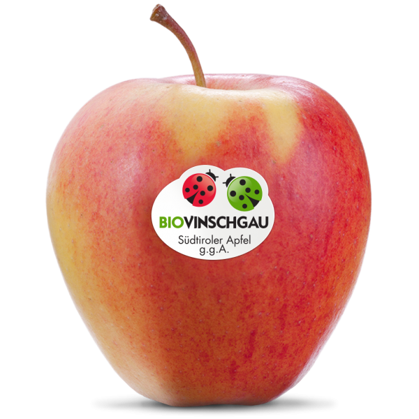 Pinova Apfelkiste Bio